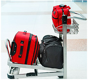 Domestic Airline Baggage Policies